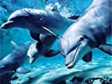 Delfín hecho a mano bordado de diamantes imágenes de animales...