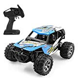 RC Car for Kids, Remote Control Car High-Speed Off Road 1:12 Scale...
