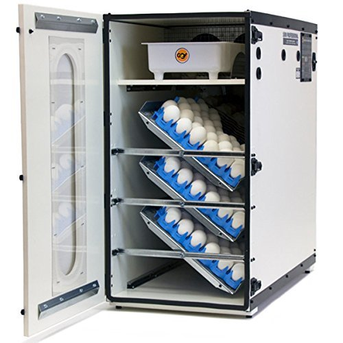 Pinnon Hatch Farms Incubator GQF 1500 American Made Professional Cabinet Incubator + 6pk Universal Egg Trays