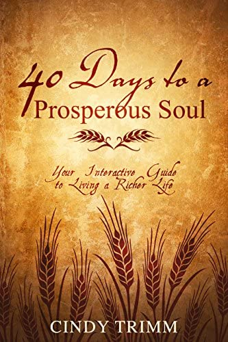 40 Days to a Prosperous Soul Your Interactive Guide to Living a Richer Life product image