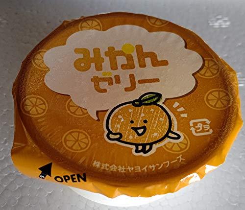 ヤヨイ みかん ゼリー 40g×40個 業務用 冷凍
