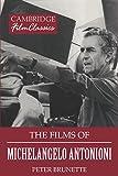 The Films of Michelangelo Antonioni (Cambridge Film Classics) (English Edition)