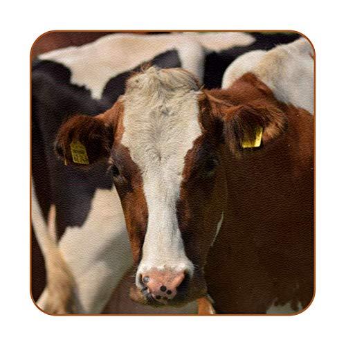 Bennigiry Rancho Animal Vaca Ganado Posavasos de Cuero Taza de café Cuadrada Taza de Vidrio Manteles Individuales Tapetes para Tazas Manteles Individuales 6 PCS