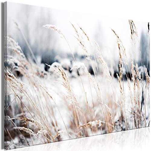 murando - Bilder Natur 90x60 cm Vlies Leinwandbild 1 TLG Kunstdruck modern Wandbilder XXL Wanddekoration Design Wand Bild - Winter Pflanzen Wiese Schnee b-B-0507-b-a