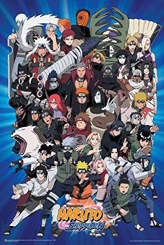 Naruto Characters Poster (24x36)