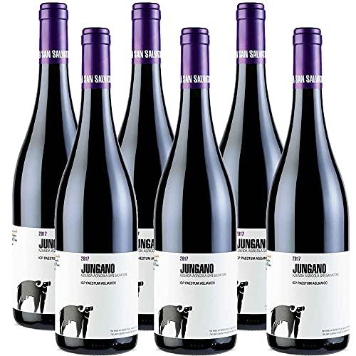 Aglianico IGP Paestum Jungano | San Salvatore | Vino Rosso Raffinato Campania | 6 Bottiglie 75Cl | Idea Regalo