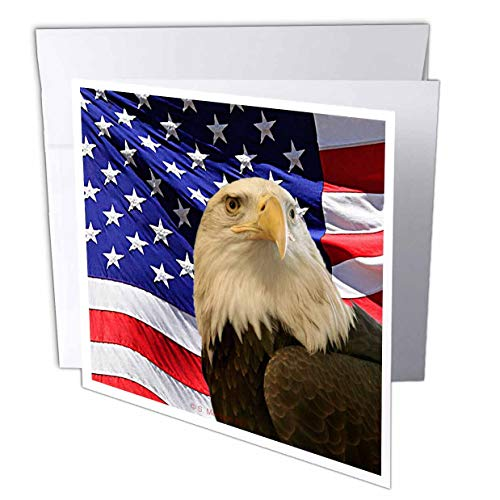 Bald Eagle and American Flag - Greeting Card, 6 x 6 inches, single (gc_21650_5)
