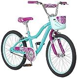 Schwinn Elm Girls Bike for Toddlers and Kids, 20-Inch Wheels, Teal