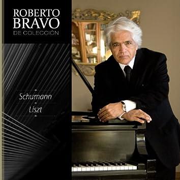 Roberto Bravo de Colección, Vol. 10