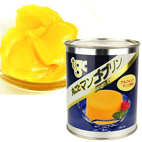 国華園 マンゴ・プリン・2号缶 1缶1組 (内容総量870g) マンゴー ぷりん 缶詰