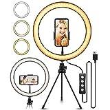 ZJING Luz De Anillo Selfie De 26 cm, Luz De Anillo De Escritorio LED con Trípode Y Se USA para Teléfonos Móviles, Maquillaje, Transmisión En Vivo Y Fotografía