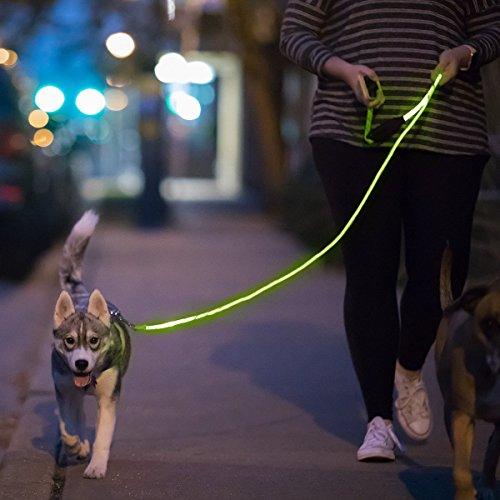 niteyleash – LED Glow in the Dark Tier Hund Leine, 5 ft, grün