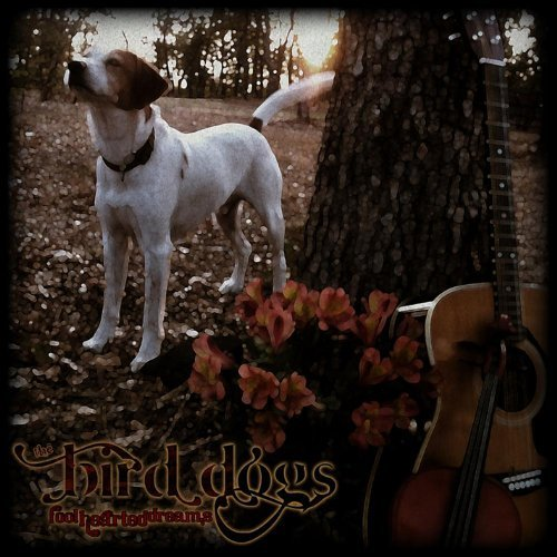 Fool Hearted Dreams by Bird Dogs