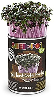 Amazon.es: Seed Box by EcoHortum - Kits de cultivo en casa ...
