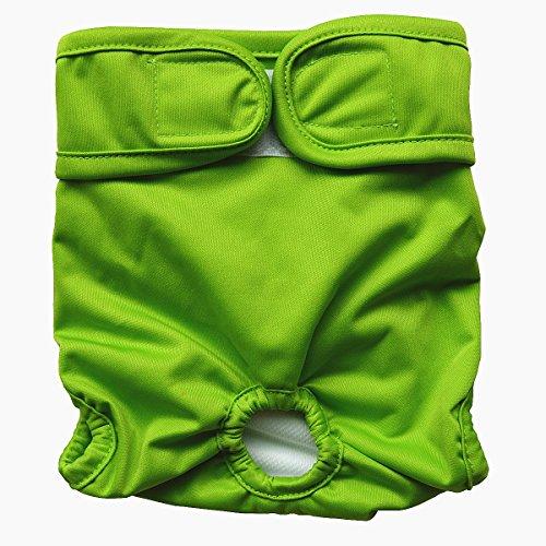 Hibaby Couches lavables réutilisables pour chien femelle (taille M 35,6 - 50,8 cm) Vert