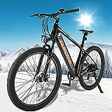 Bicicleta Eléctrica de Montaña Batería Extraíble 250 W Motor E-Bike MTB Pedal Assist con Instrumento LCD Central & Autonomía Buena