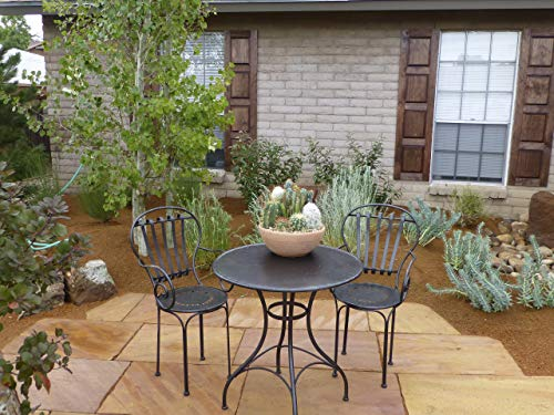 Xeriscaping in New Mexico