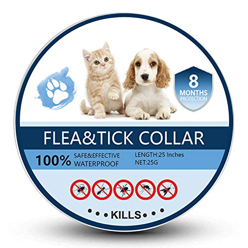 Bomior Flea and Tick Collar for Dogs & Cats
