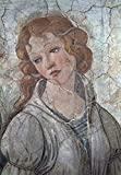 Sandro Botticelli – A Young Woman Receives Gifts From