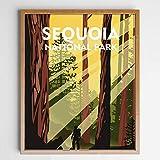 Sequoia National Park Travel Wall Art Sequoia National Park Minimalist Decor Travel Poster Wanderlust Gift, UNFRAMED 8x10inch