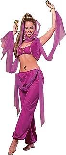 Rubie's Arabian Princess Adult Costume