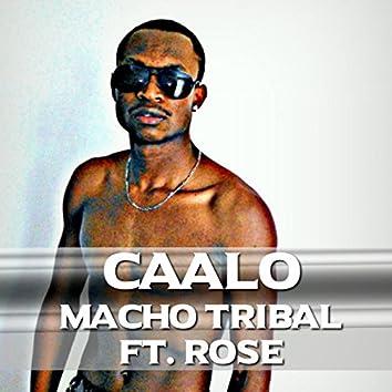 Macho Tribal (feat. Rose)