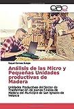 Análisis de las Micro y Pequeñas Unidades productivas de Madera: Unidades Productivas del Sector de Trasformación de bienes Finales de Madera del Municipio de San Ignacio de Velasco