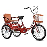 Bicicleta de 20 Pulgadas Triciclo Para Adultos Bicicleta de 3 Ruedas 1 Marchas Bicicleta de Triciclo Plegable con Marco de Aleación de Compras Carga Para Compras Exterior Picnic Sports ( Color : Red )