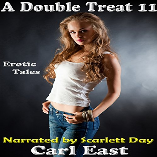 A Double Treat 11 audiobook cover art