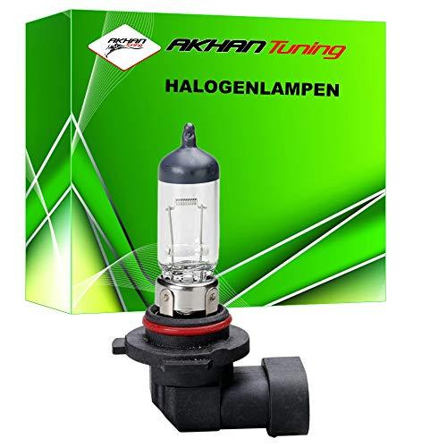 57980 - lampe halogène ampoule ampoule de rechange H12 12V 53W PZ20D