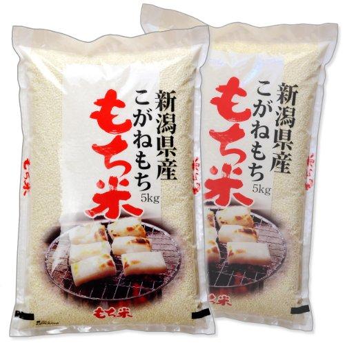 新潟県産 白米 こがねもち米 10kg (5kg×2袋) 令和2年産