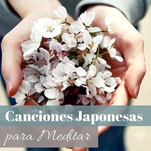 Canciones Japonesas para Meditar - Abre tu Alma al Zen Interior y a la Paz Profunda