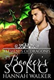 Booker's Song (Elements of Dragonis Book 1) (English Edition)