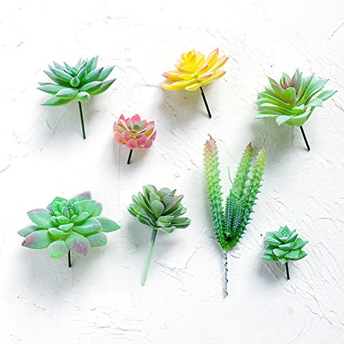 BBGSFDC 8 piezas de plantas artificiales flocadas de plástico suculentas sin maceta, plantas realistas, falsas con textura suculentas para bricolaje decoración de paisaje del hogar
