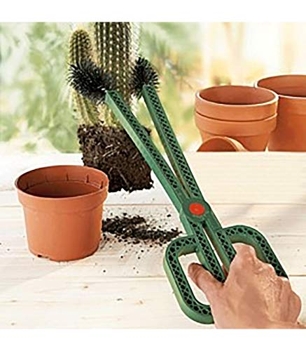 Astuceo Kaktange für Kaktus