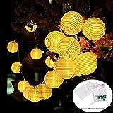 MOVEONSTEP Cadena de 20 luces LED Batería Alimentado por farolillos Farol 4,2 m blanco cálido