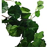 Artificial Hanging Ivy Leaf Vine, 5.6 Ft Faux Begonia Leaves Twigs Silk Plant Leaves Garland String in Green for Indoor Outdoor Wedding Decor Party Supplies