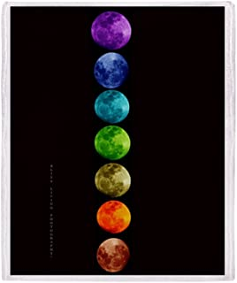 CafePress-Chakra Moons-Soft Fleece Throw Blanket
