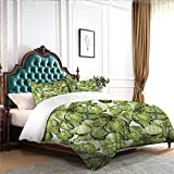 Hiiiman - Juego de ropa de cama con 2 fundas de almohada, estilo acuarela, diseño de insectos urania, helius saturnia y pavonia, diseño de animales