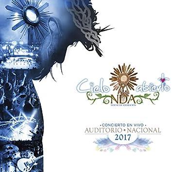 Auditorio Nacional 2017 (En Vivo)