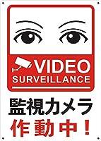 目が合う防犯用 監視カメラ作動中 金属板ブリキ看板警告サイン注意サイン表示パネル情報サイン金属安全サイン