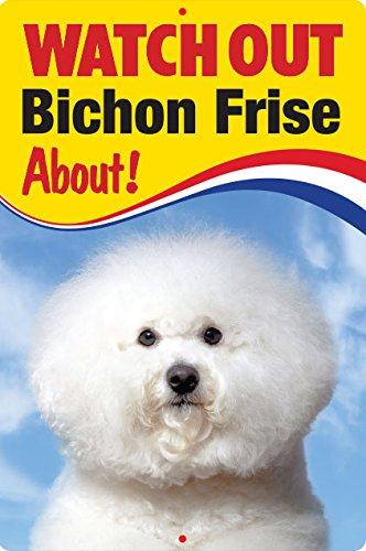 Pet/Dog 3D Linsenraster Flexible Zeichen ~ Watch Out 'Bichon Frisé', über.