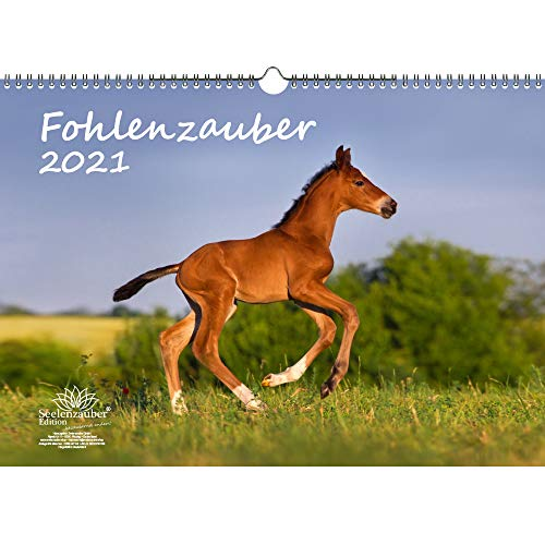 Fohlenzauber DIN A3 Kalender für 2021 Pferde und Fohlen - Seelenzauber