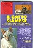 Guida al gatto siamese