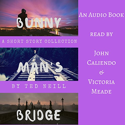 Bunny Man's Bridge audiobook cover art