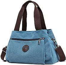 DOURR Hobo Handbags Canvas Crossbody Bag for Women, Multi Compartment Tote Purse Bags (Blue)