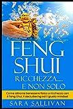 feng shui ricchezza e non solo: come attrarre benessere fisico e ricchezza con il feng shui, il decluttering ed il giusto mindset