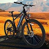 Bicicleta eléctrica Bicicleta Eléctrica E-MTB 27,5' 250 W Motor Bicicleta Eléctrica Urbana Urbana Trekking