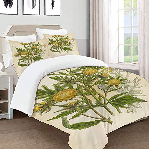 772 Duvet Cover Set-Bedding,marigold cottonweed sunflower tansy victorian botanical illustration,Quilt Cover Bedlinen-Microfibre 240×260CM with 2 Pillowcase 50×80CM