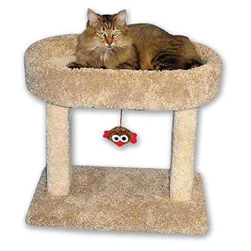 Beatrise Pet Products Kitty Cradle